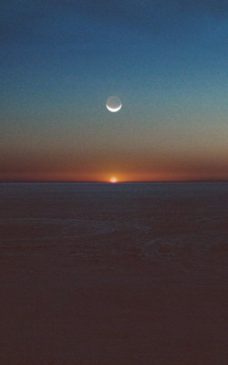 am31-tycho-spectre-art-music-sunset-dessert-art