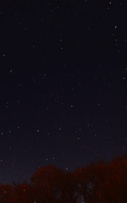 nc26-night-sky-dark-star-lights-tree-nature