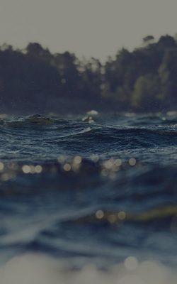 mh42-water-drowning-lake-green-nature