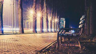 no43-street-night-bench-nature-dark