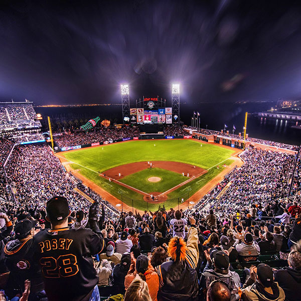Aa57-baseball-stadium-sports-art
