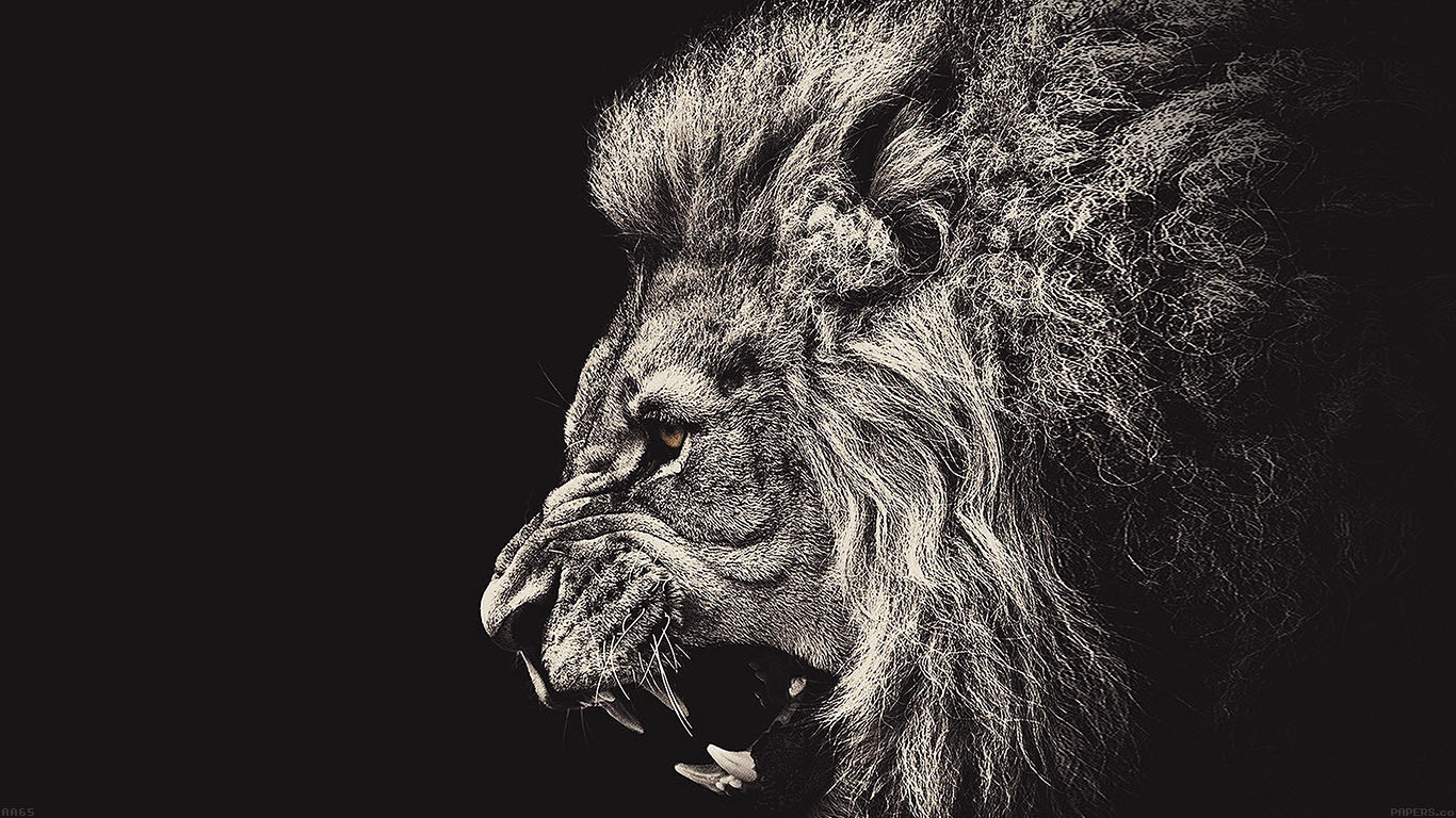 wallpaper-desktop-laptop-mac-macbook-aa65-shouting-lion-illust-art-wallpaper