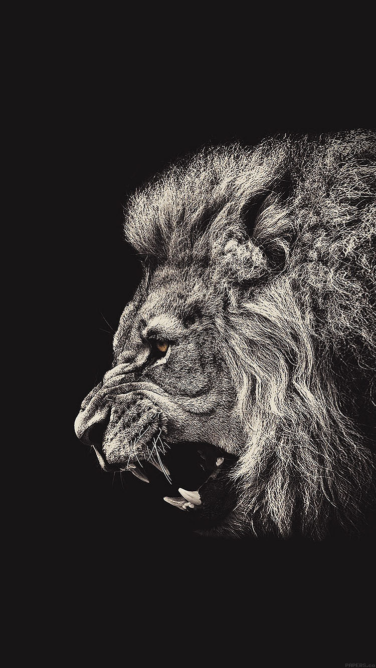 iPhonepapers.com-Apple-iPhone8-wallpaper-aa65-shouting-lion-illust-art