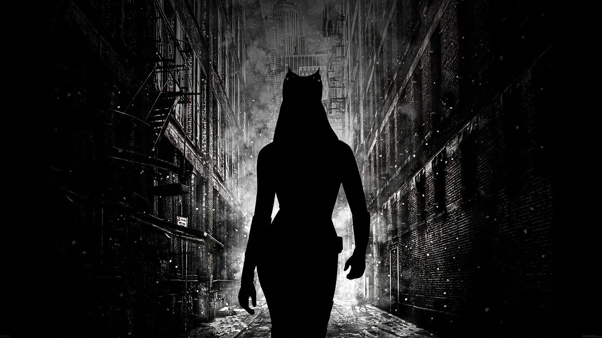 ab23-wallpaper-catwoman-walking-dark - Papers.co