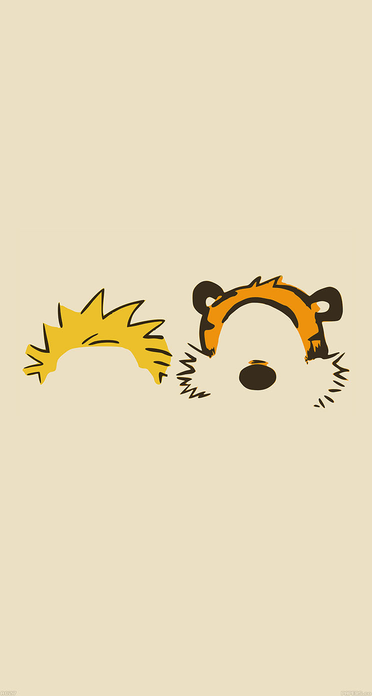 Calvin and hobbes essay