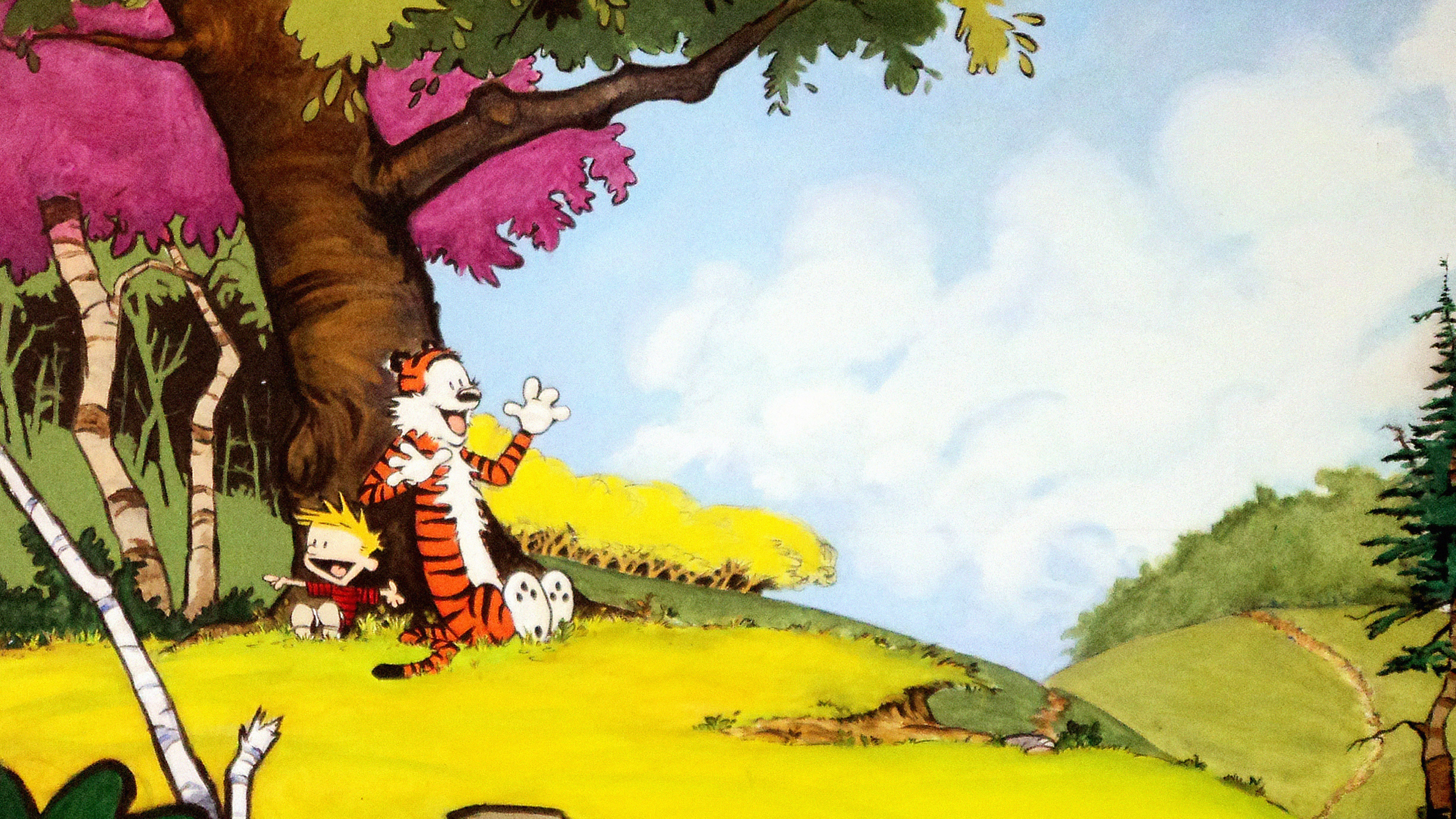 Ac48 Wallpaper Calvin And Hobbes After Nap Papers Co