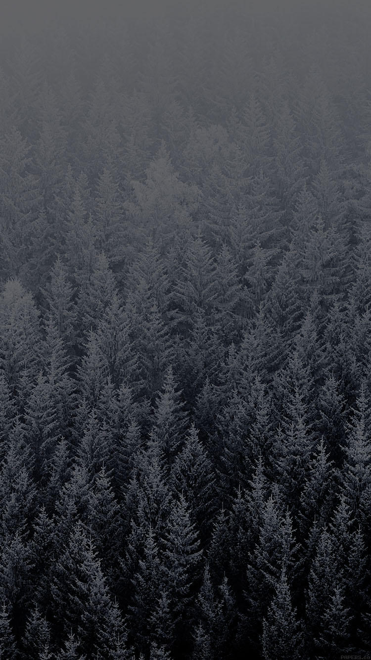 iPhone6papers.co-Apple-iPhone-6-iphone6-plus-wallpaper-ad04-wallpaper-ios8-iphone6-plus-apple-official-default-night-snow-mountain