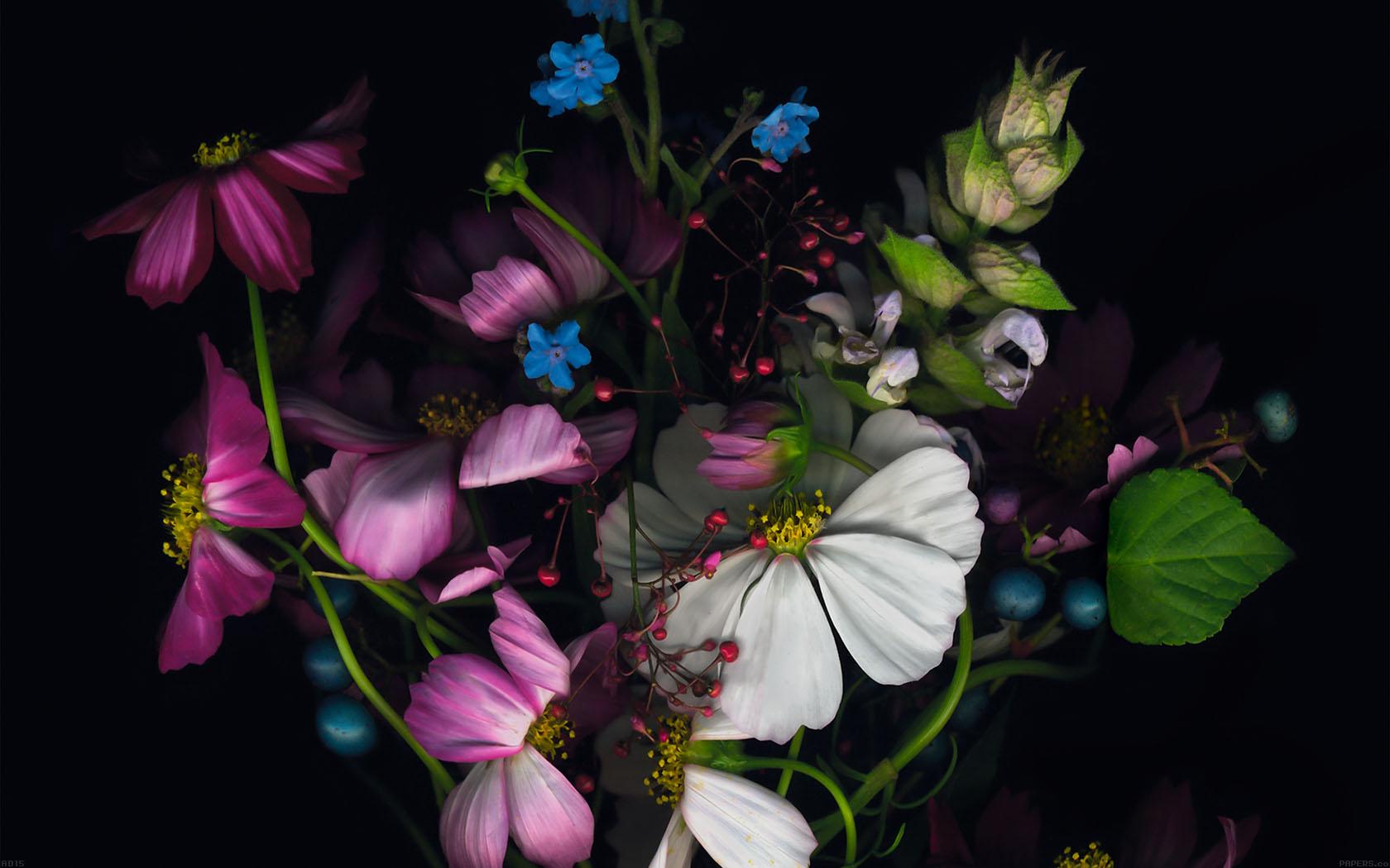Как оживает цветок фото