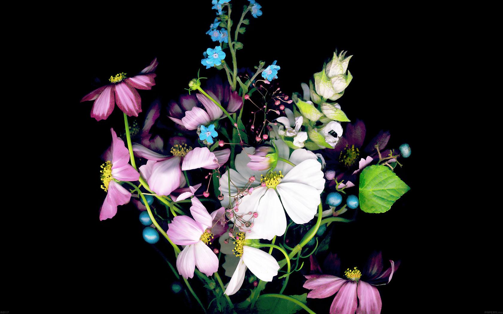 Ad17-wallpaper-apple-ios8-iphone6-small-dark-flower