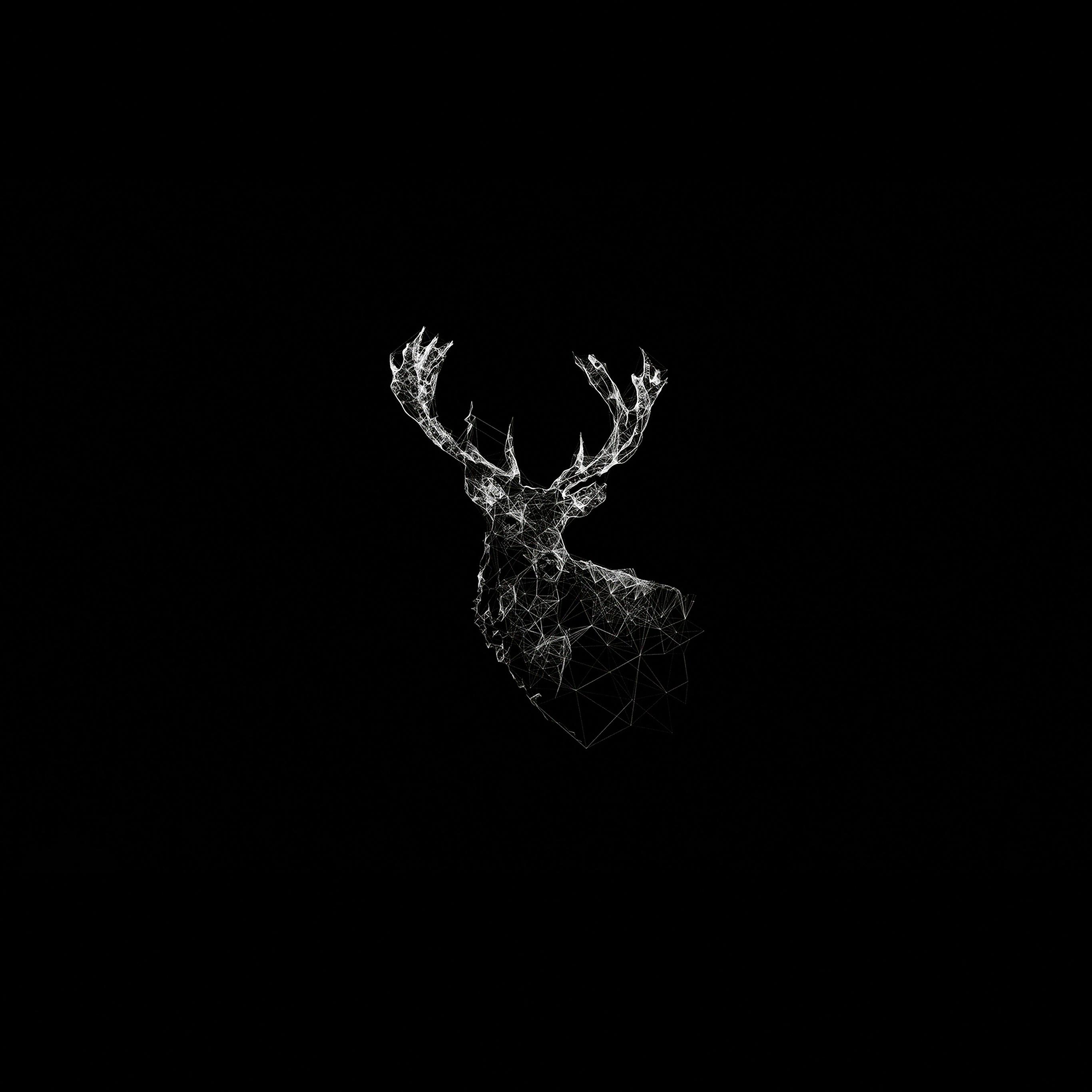 Ad29 Deer Animal Illust Dark Papersco