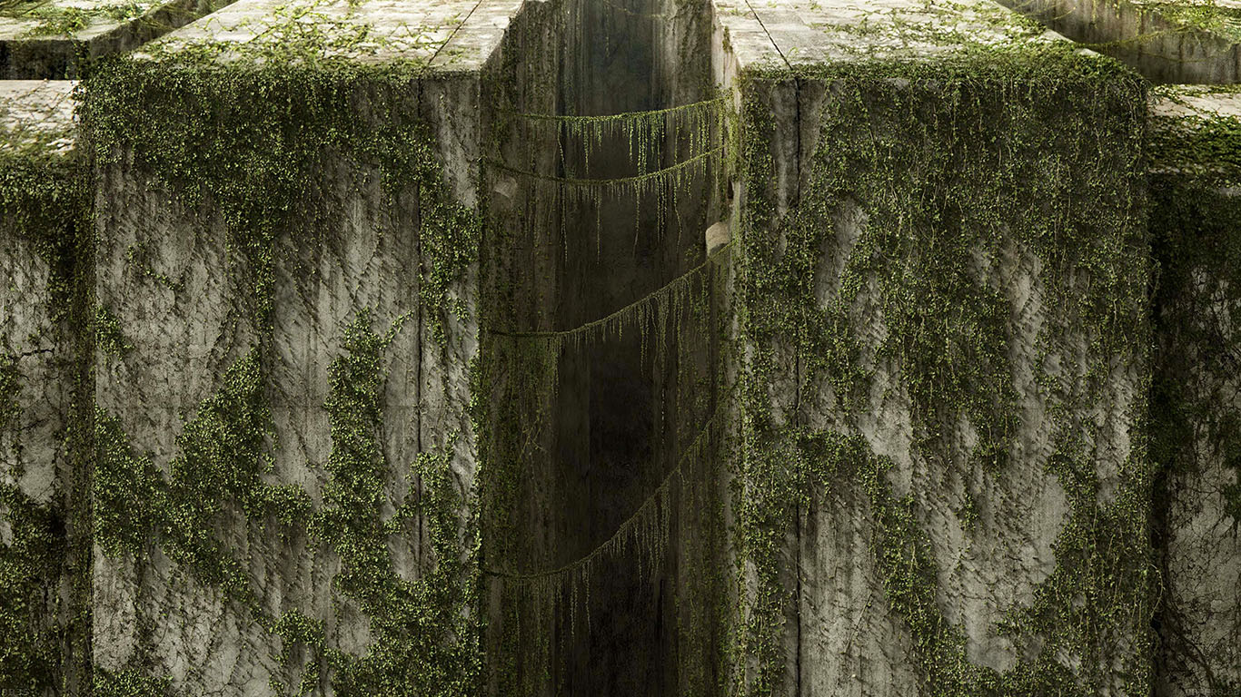 iPapers.co-Apple-iPhone-iPad-Macbook-iMac-wallpaper-ad35-the-maze-runner-poster