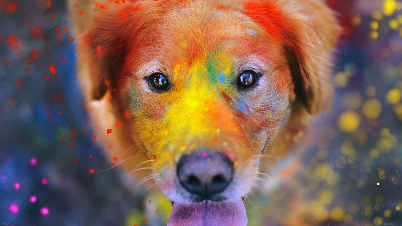 iPapers.co-Apple-iPhone-iPad-Macbook-iMac-wallpaper-ae49-dog-smile-fall-leaves-art-nature-wallpaper