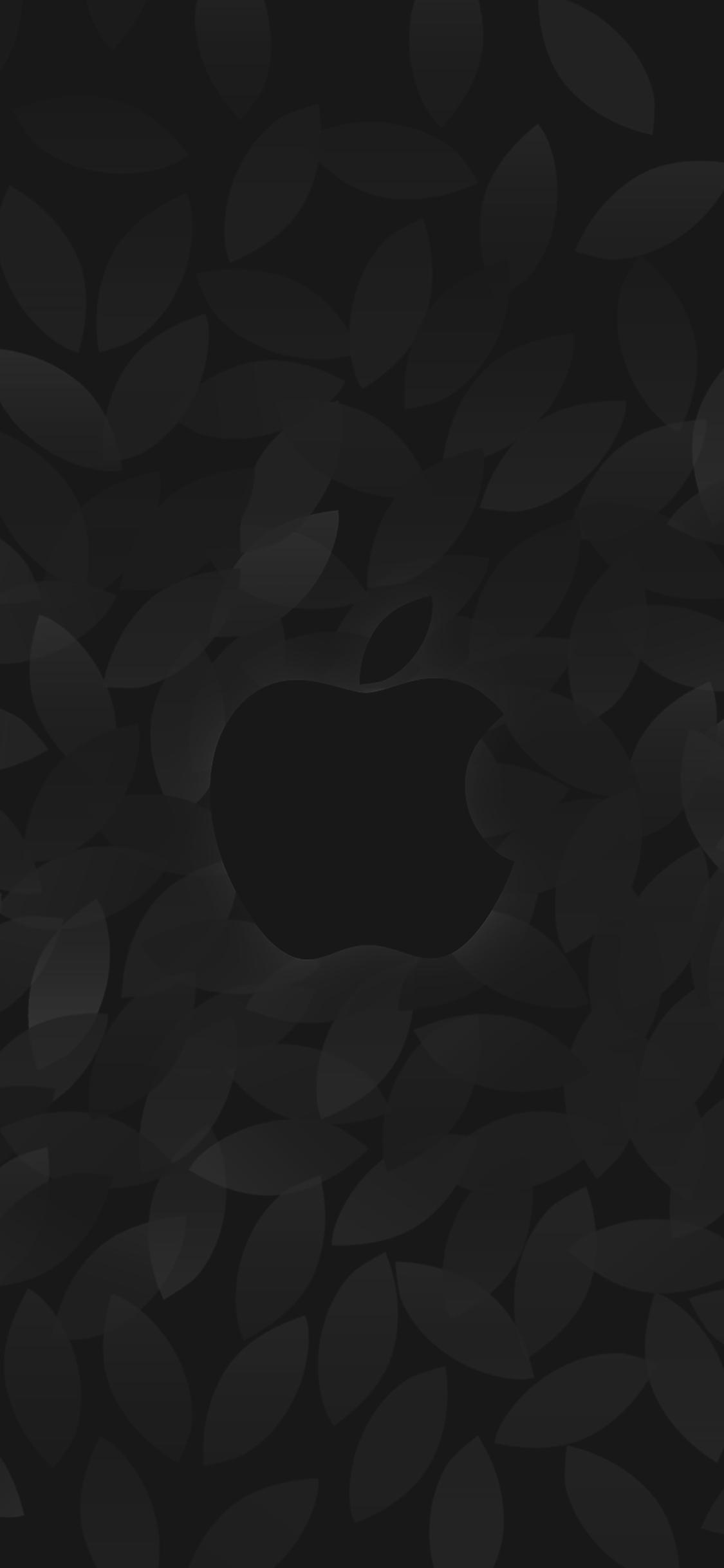 iPhoneXpapers.com-Apple-iPhone-wallpaper-ae97-apple-in-fall-dark