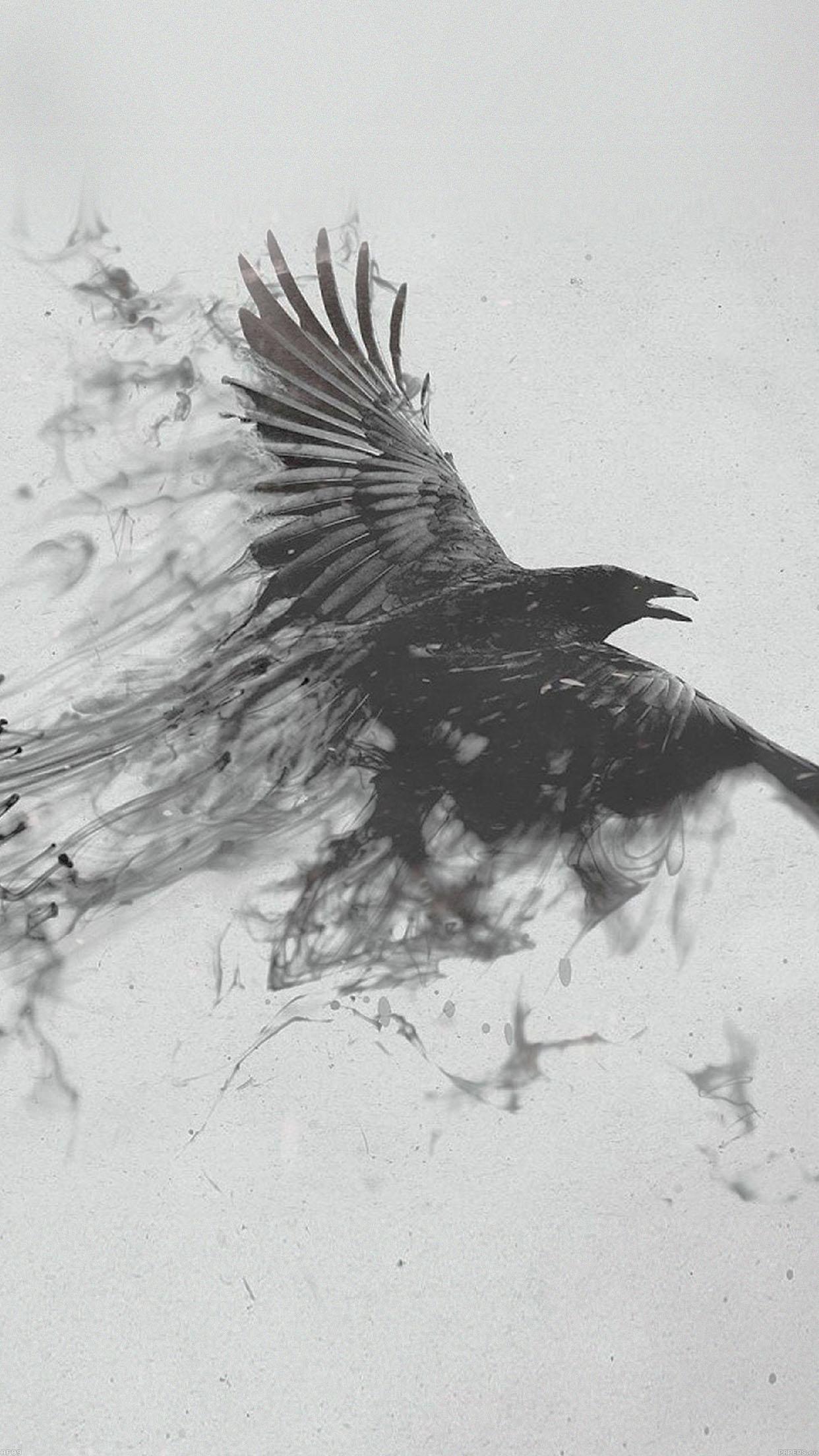 Af09 Black Bird Smoke Art Illust