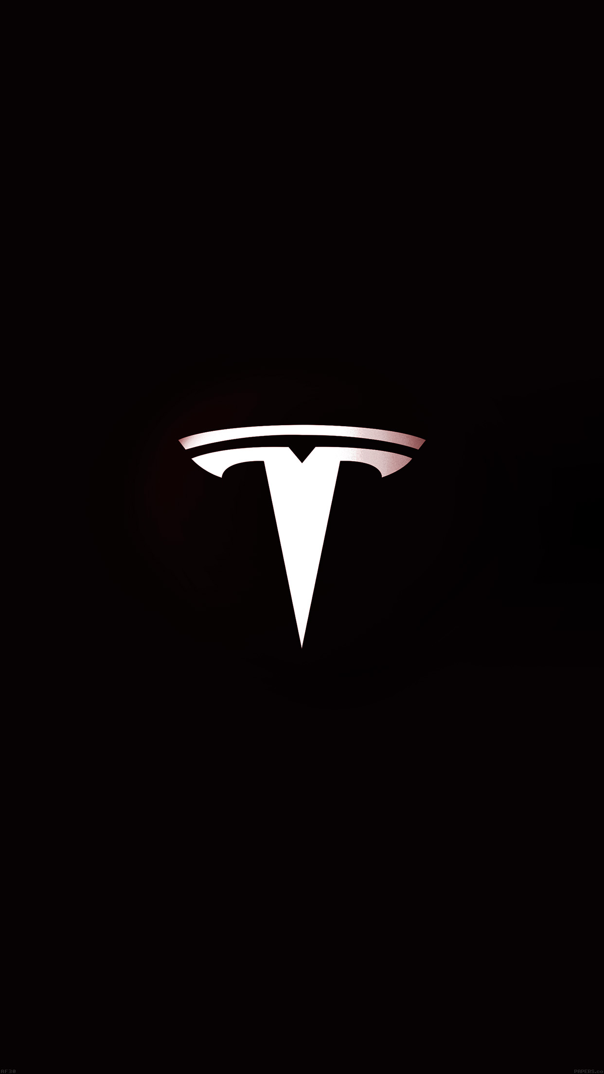 tesla motors essay Tesla motors' strategy to revolutionize the global automotive industry remember this is not an essay but a concise and professional business analyses report.