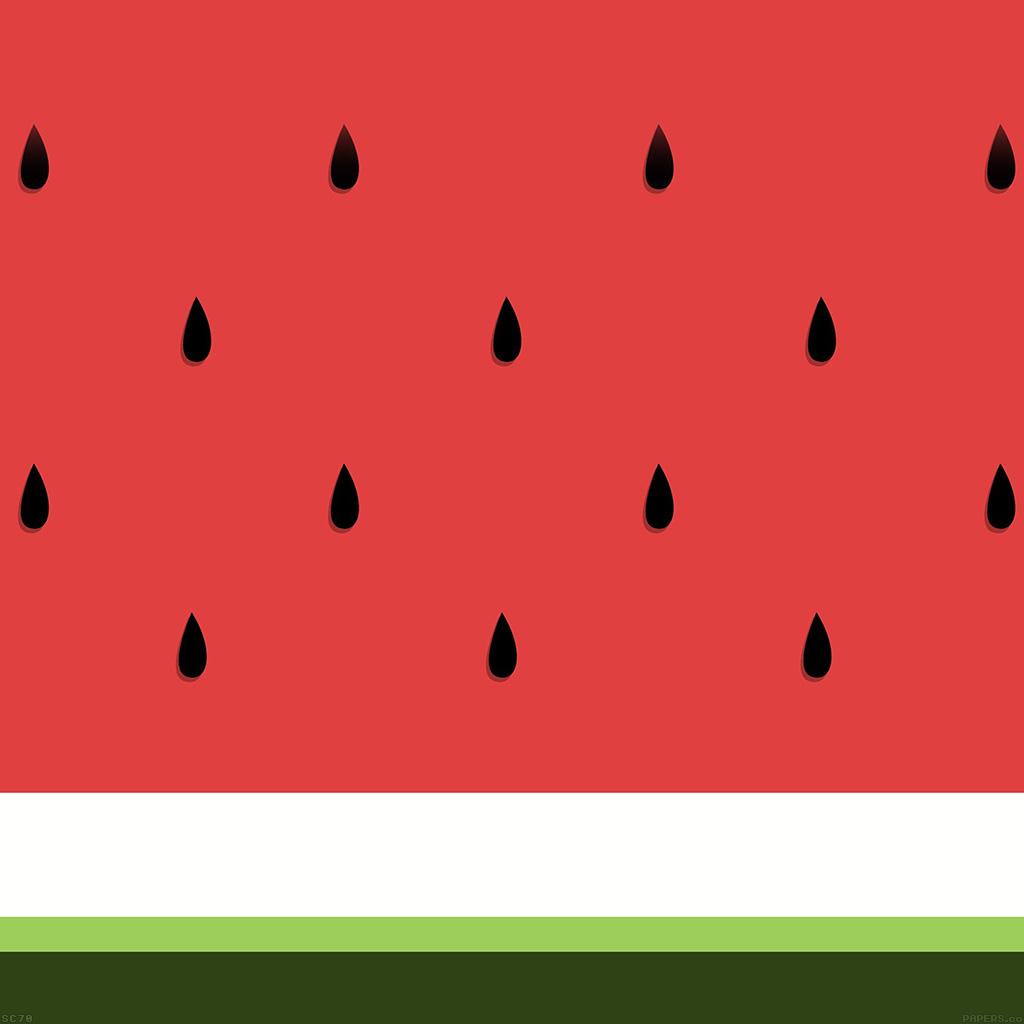 android-wallpaper-af46-watermelon-minimal-art-wallpaper