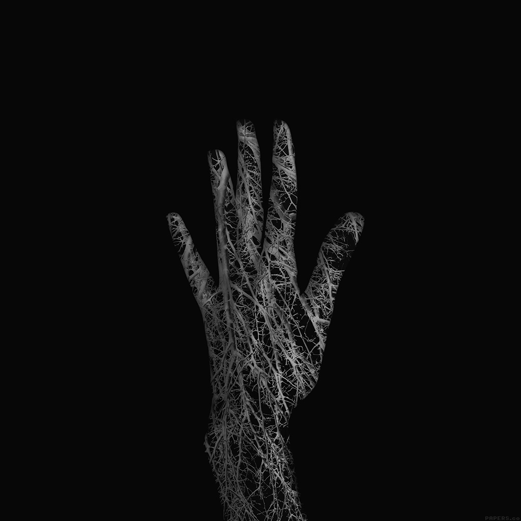 android-wallpaper-af99-holleyandchris-black-branched-out-hand-nature-wallpaper