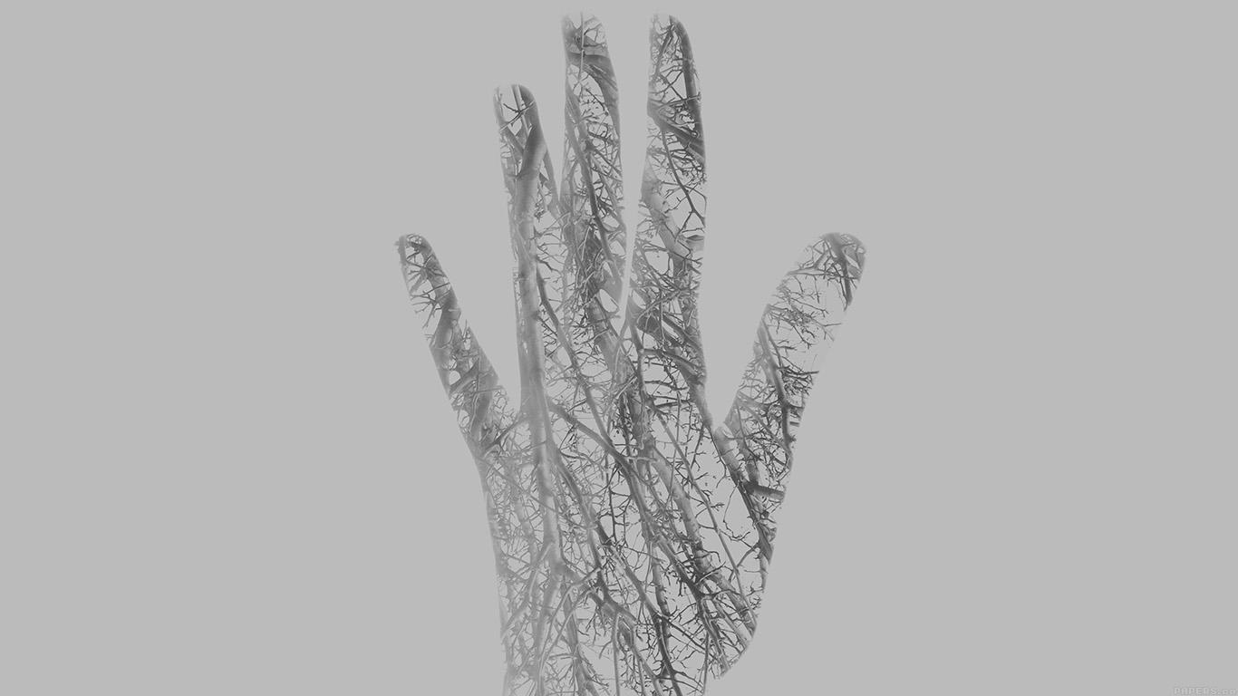 wallpaper-desktop-laptop-mac-macbook-ag00-holleyandchris-white-branched-out-hand-nature-wallpaper