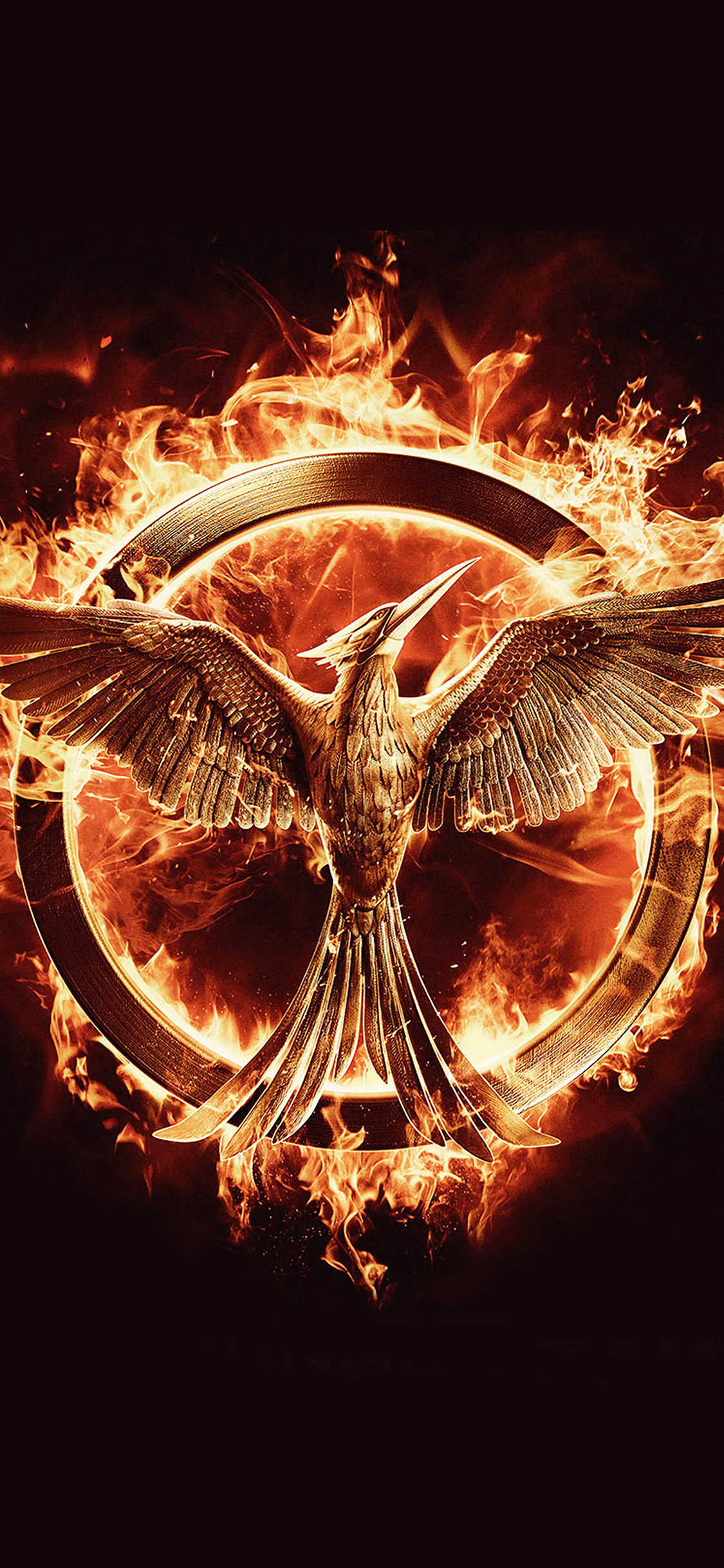 iPhoneXpapers.com-Apple-iPhone-wallpaper-ag75-hunger-games-mockingjay-logo-art