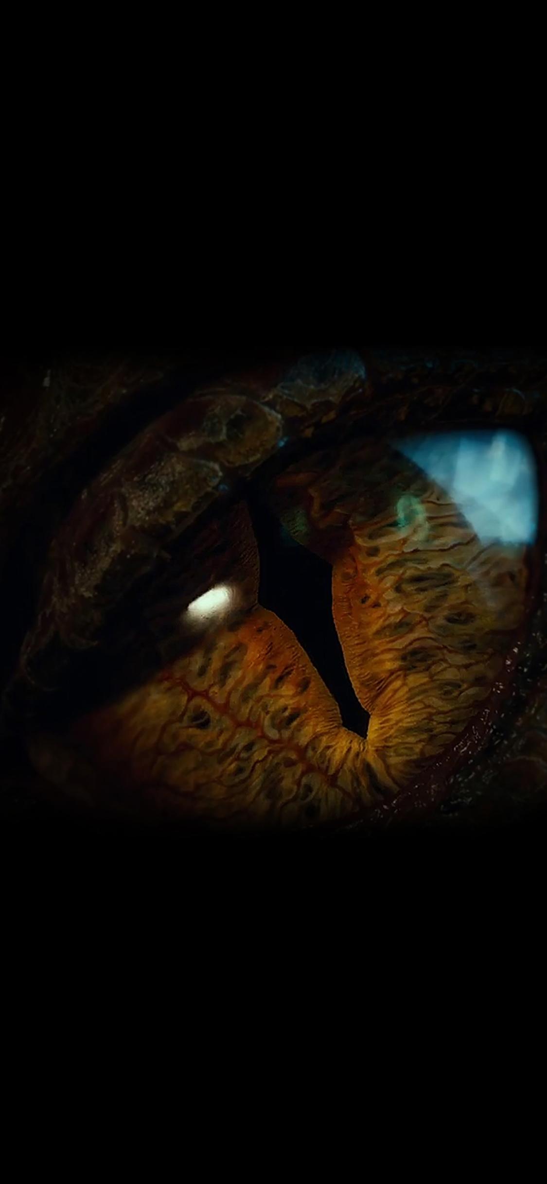 iPhoneXpapers.com-Apple-iPhone-wallpaper-ah32-eye-dragon-hobbit-the-battle-five-armies-art-dark