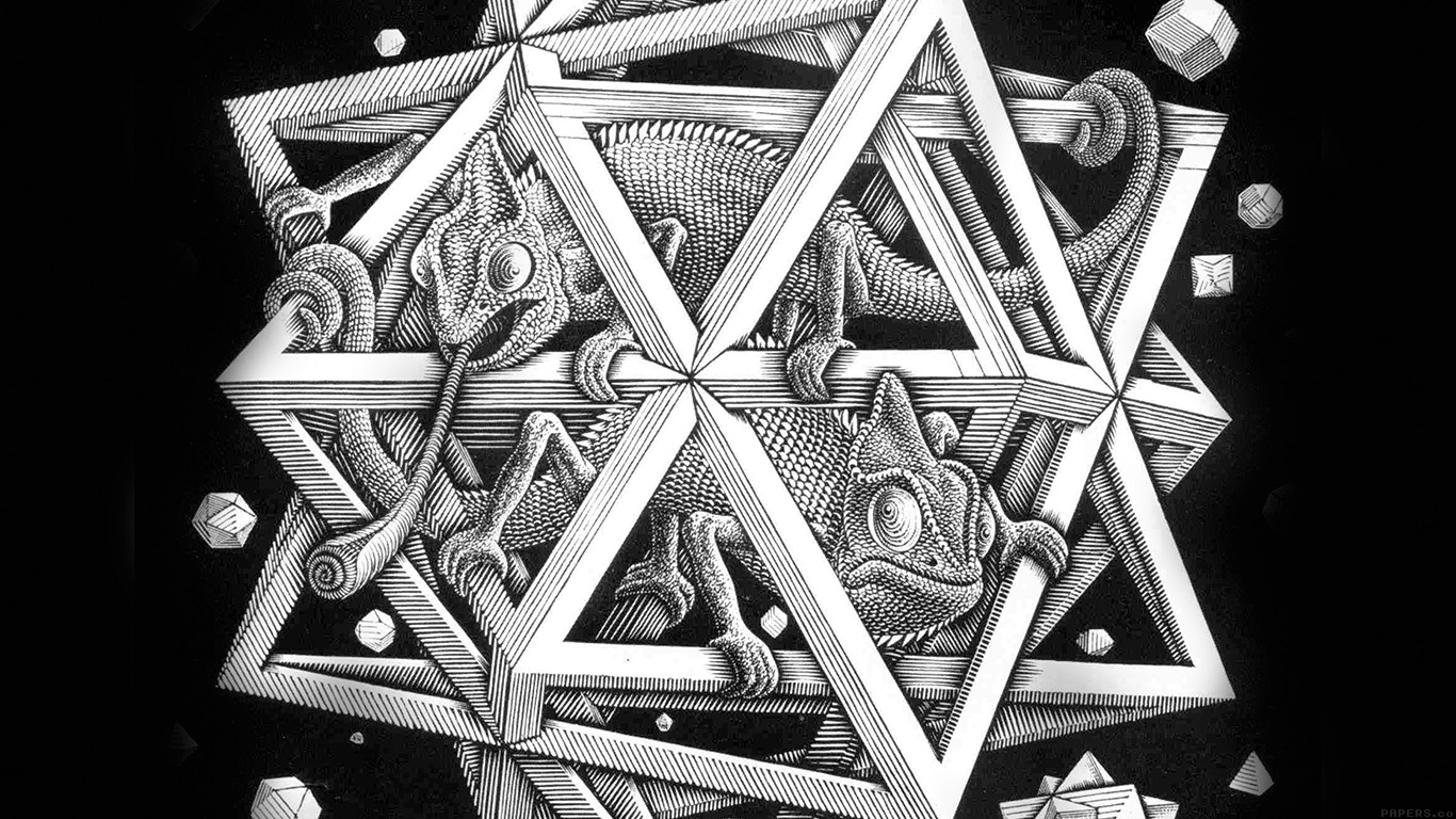 iPapers.co-Apple-iPhone-iPad-Macbook-iMac-wallpaper-ah71-mc-escher-space-art-illust-lizard-bw-wallpaper