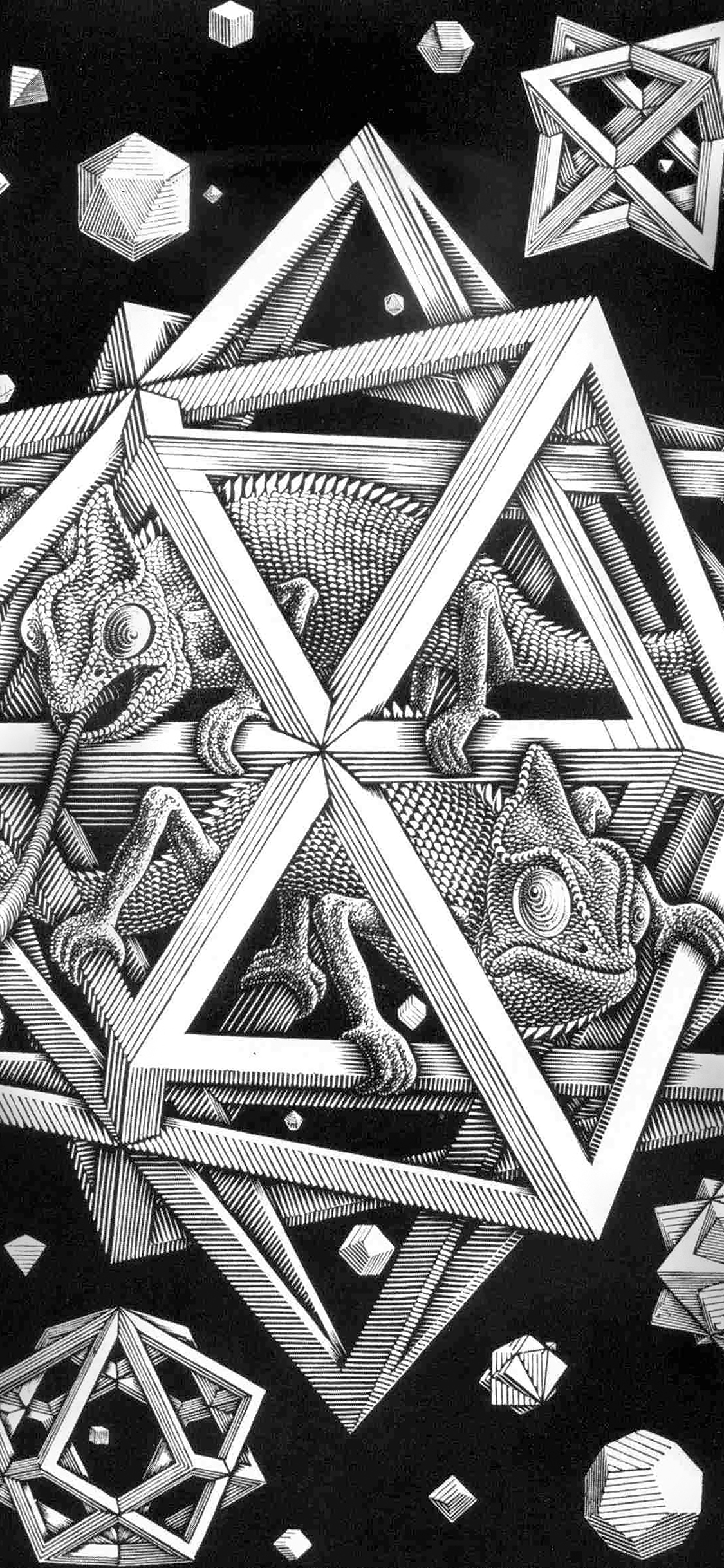 iPhoneXpapers.com-Apple-iPhone-wallpaper-ah71-mc-escher-space-art-illust-lizard-bw