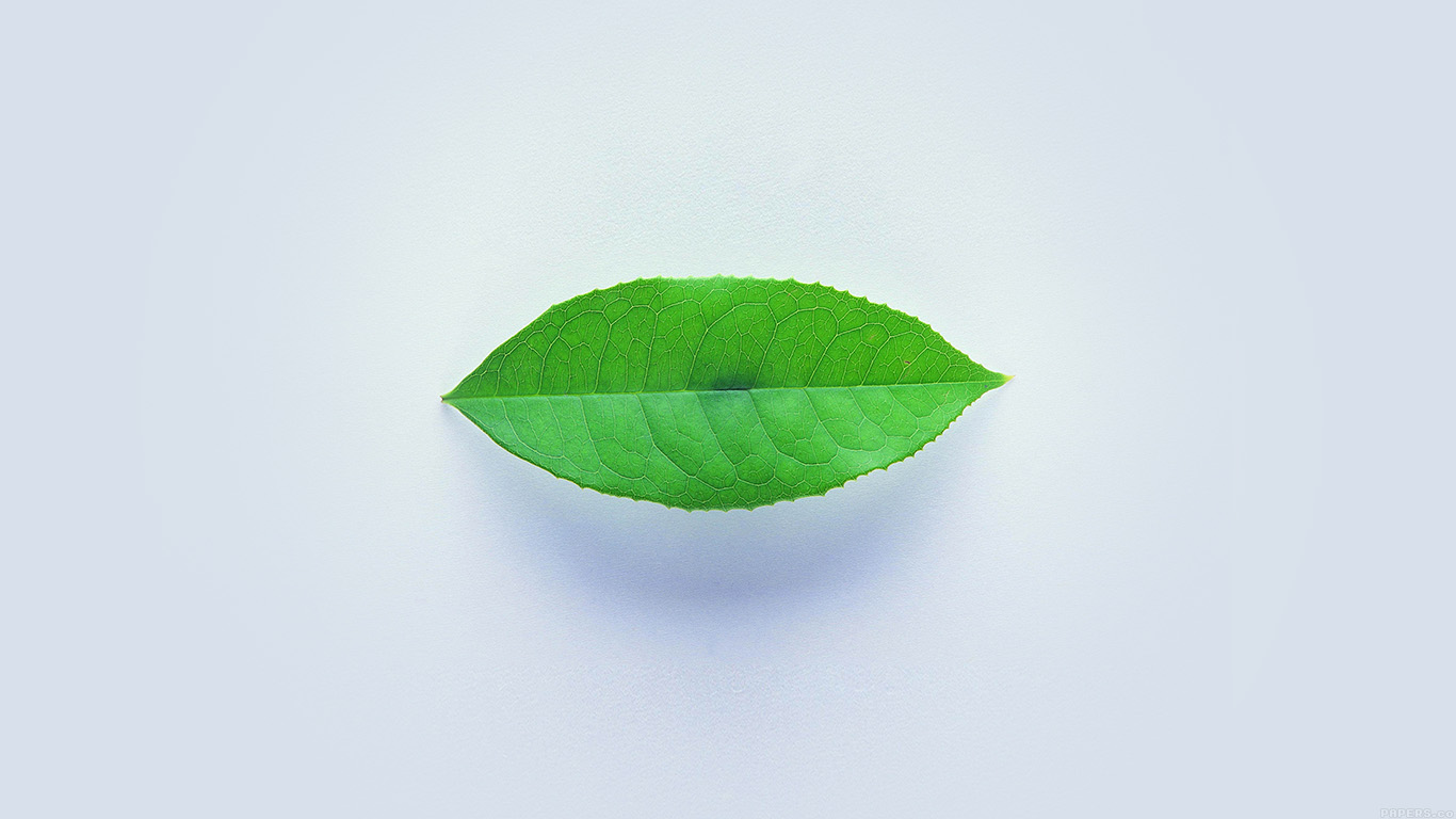 iPapers.co-Apple-iPhone-iPad-Macbook-iMac-wallpaper-ah89-green-leaf-minimal-nature-art-wallpaper