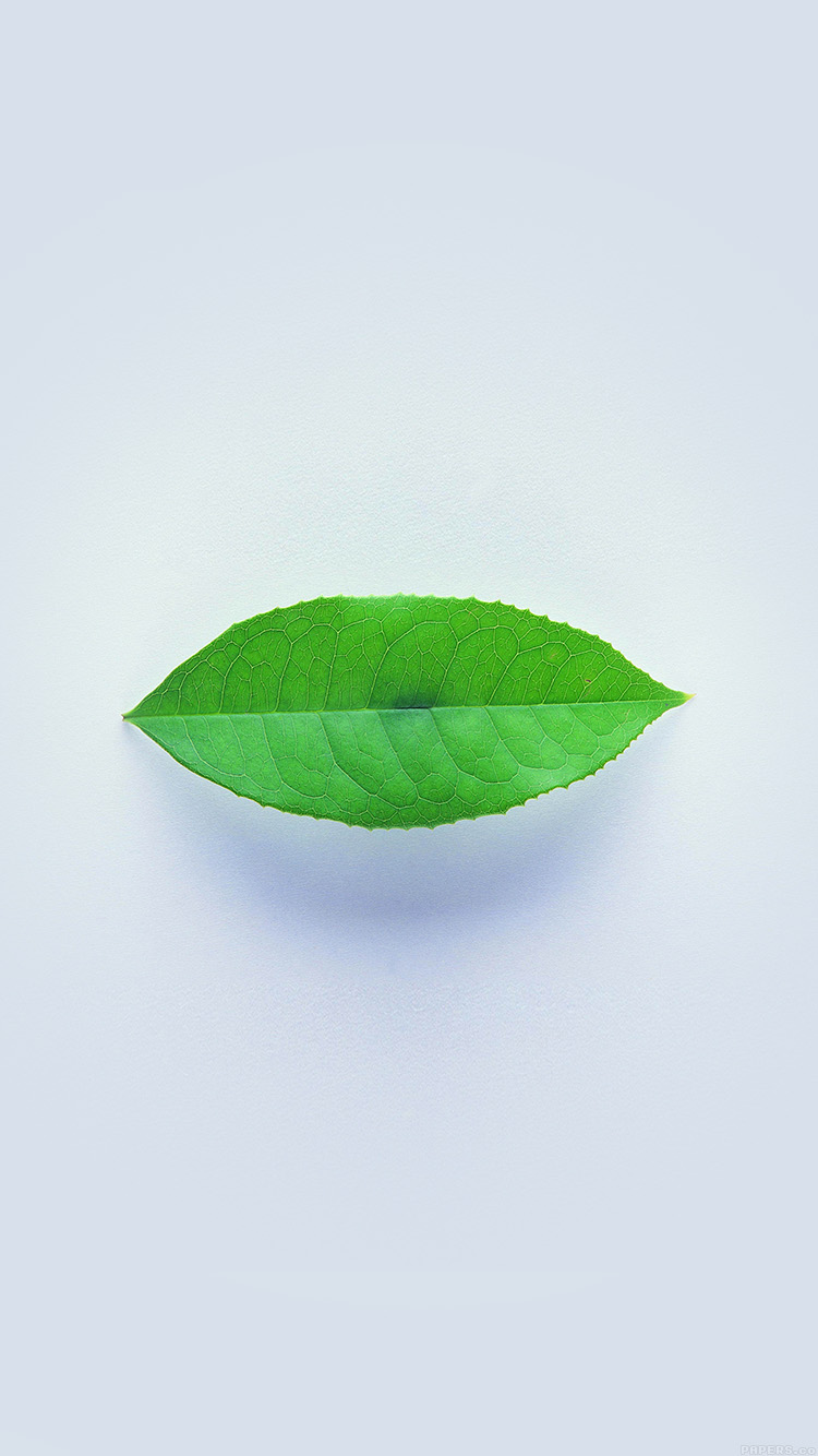 iPhonepapers.com-Apple-iPhone8-wallpaper-ah89-green-leaf-minimal-nature-art