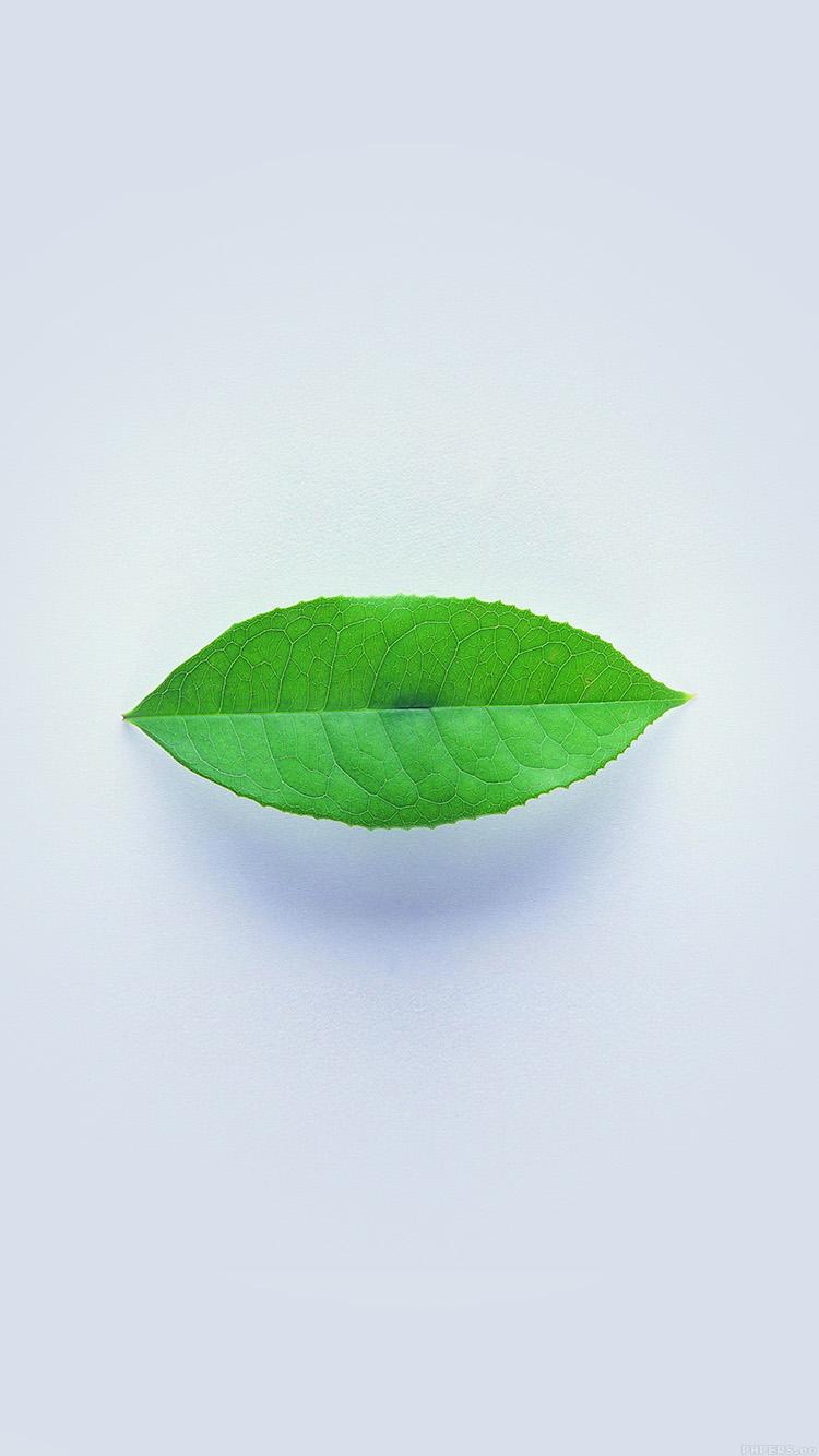 Papers.co-iPhone5-iphone6-plus-wallpaper-ah89-green-leaf-minimal-nature-art