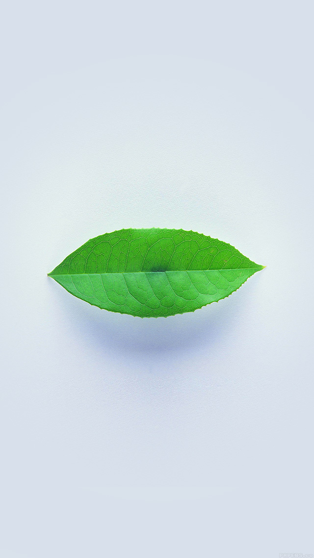 freeios8.com-iphone-4-5-6-plus-ipad-ios8-ah89-green-leaf-minimal-nature-art