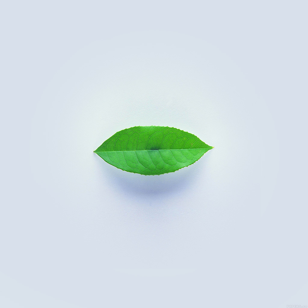 android-wallpaper-ah89-green-leaf-minimal-nature-art-wallpaper