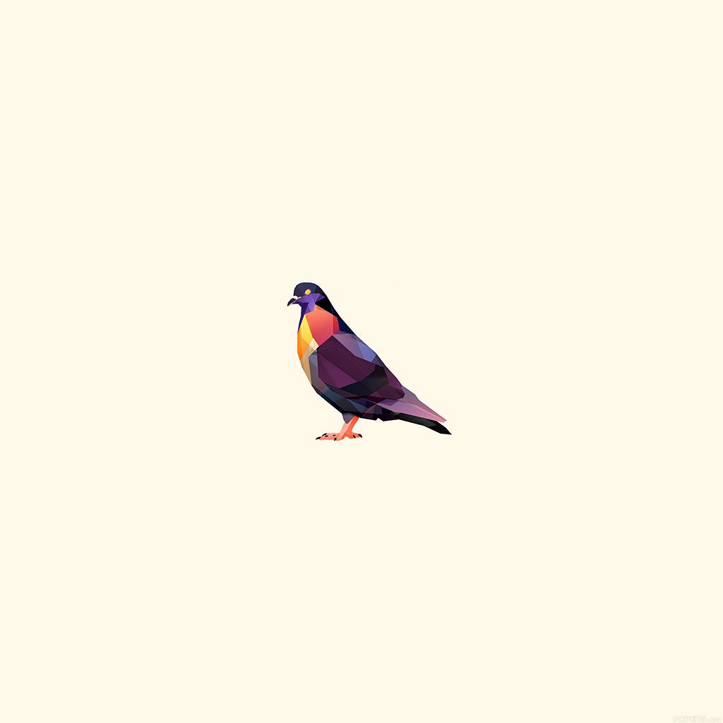 android-wallpaper-aj50-minimal-pigeon-bird-illust-art-wallpaper