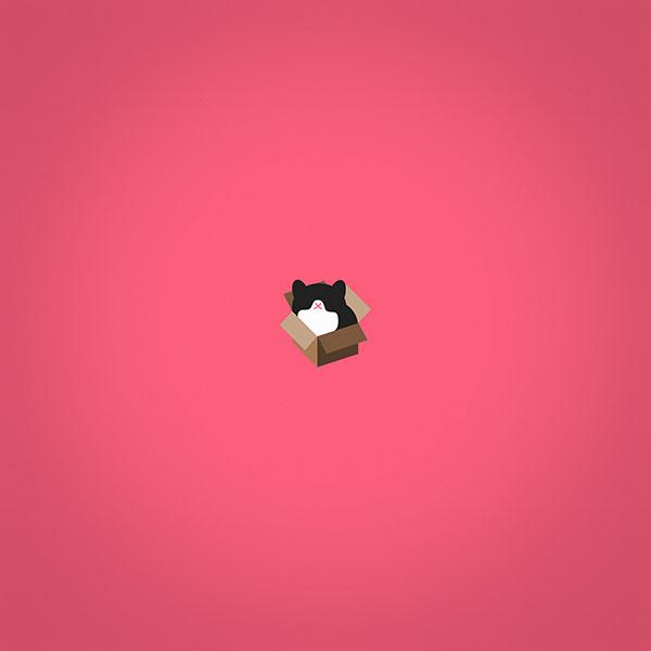 iPapers.co-Apple-iPhone-iPad-Macbook-iMac-wallpaper-aj73-cat-box-red-illust-animal-art-minimal-wallpaper