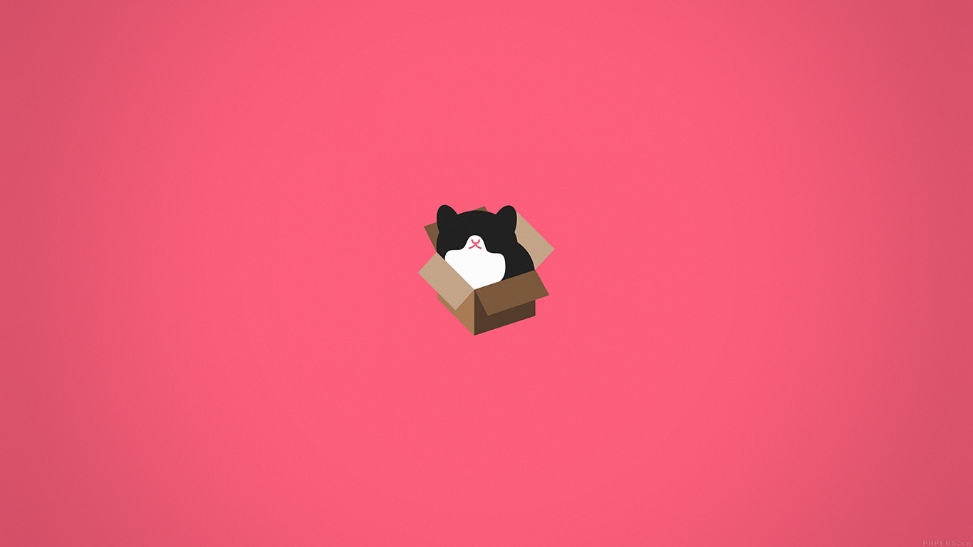 aj73-cat-box-red-illust-animal-art-minimal - Papers.co