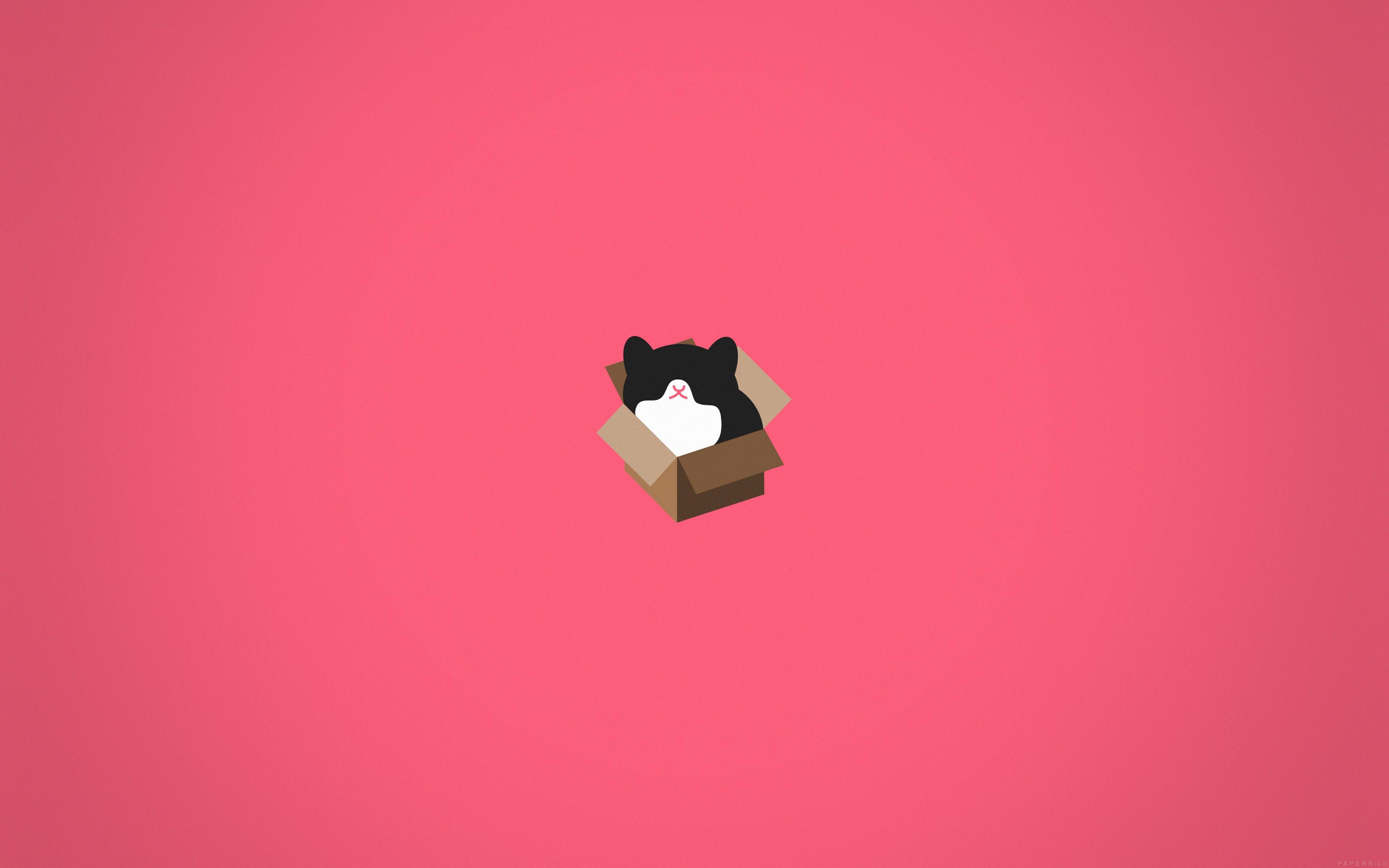Good Wallpaper Macbook Cat - papers  Graphic_857926.jpg