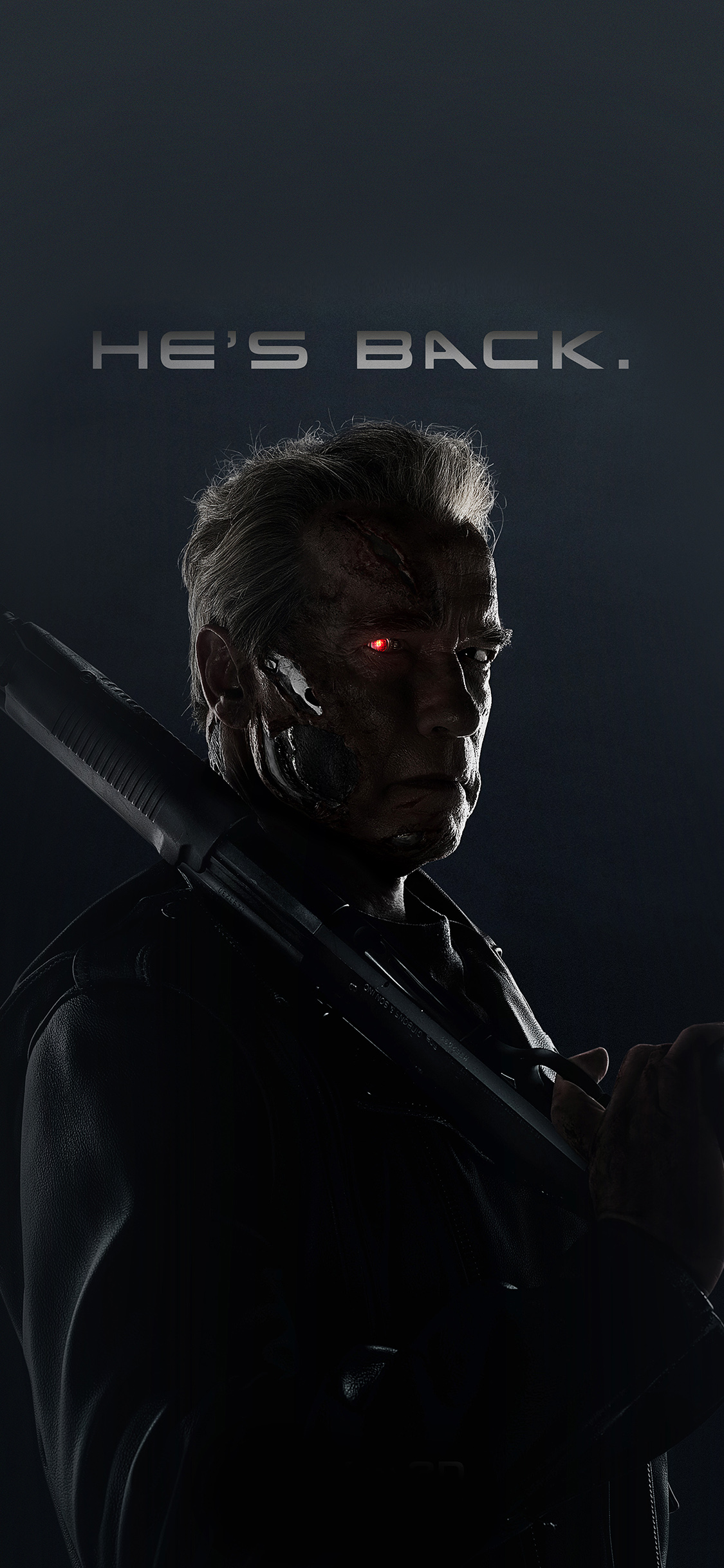 aj96-terminator-he-is-back-film-arnold-hero - Papers.co