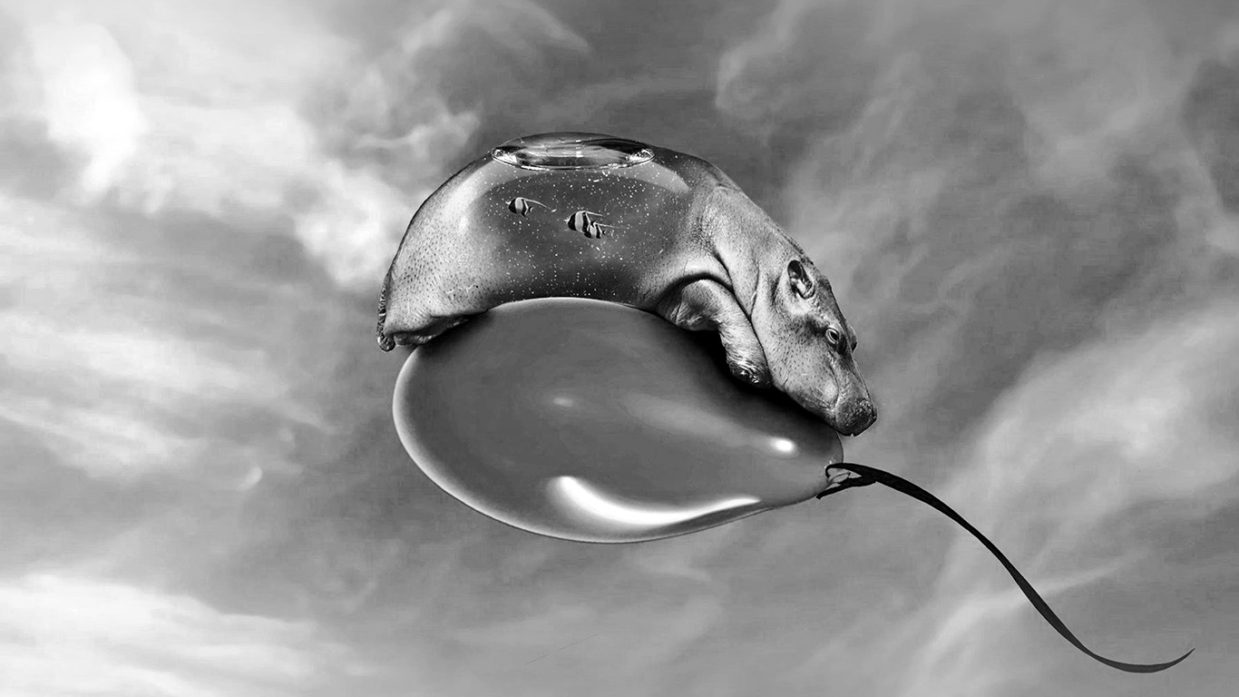 desktop-wallpaper-laptop-mac-macbook-air-am85-hippo-dark-bw-ballon-skyart-illust-animal-wallpaper