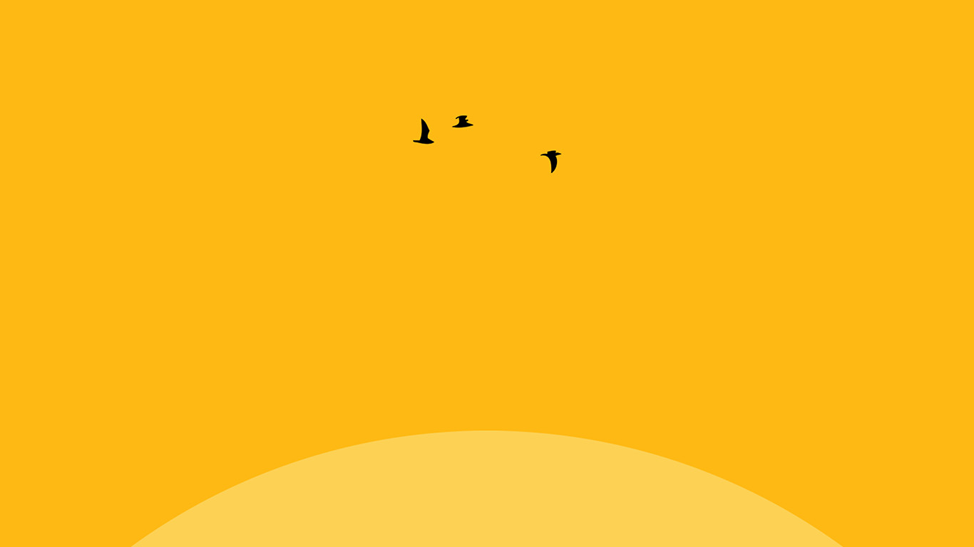 desktop-wallpaper-laptop-mac-macbook-airan22-sunset-yellow-bird-minimal-wallpaper