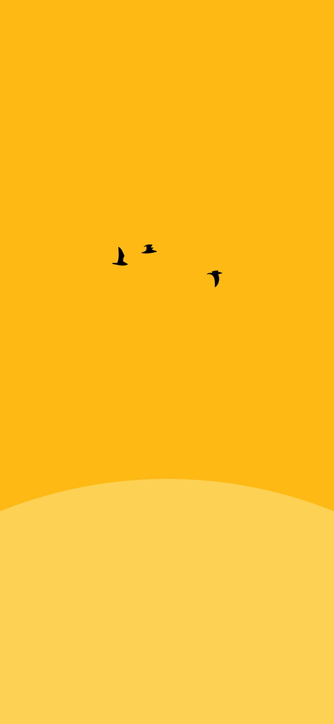 Simple Wallpaper Bird Minimalist - papers  Trends_543225.jpg