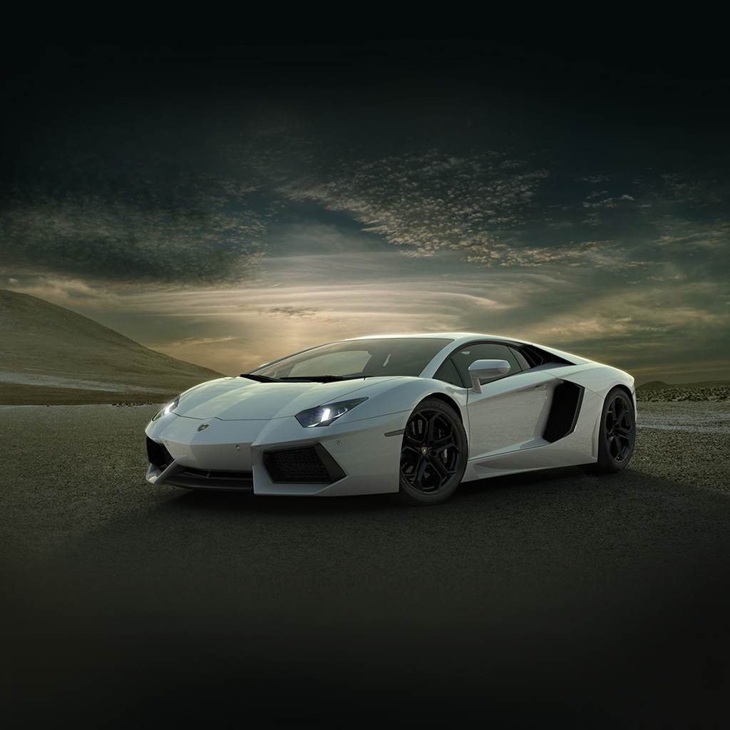An41-lamborghini-car-exotic-white-art