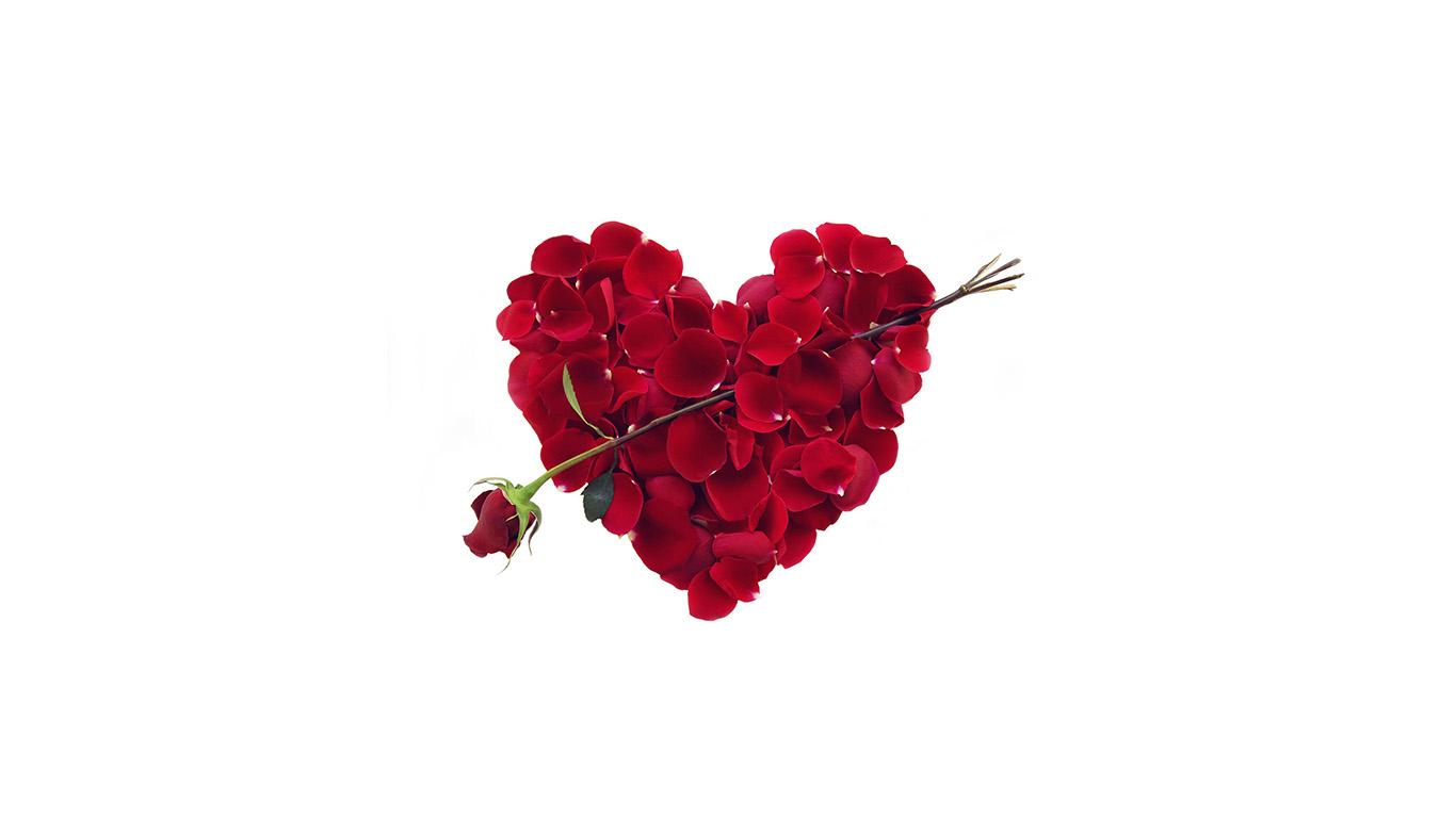 wallpaper-desktop-laptop-mac-macbook-ap34-rose-love-valentine-minimal-red
