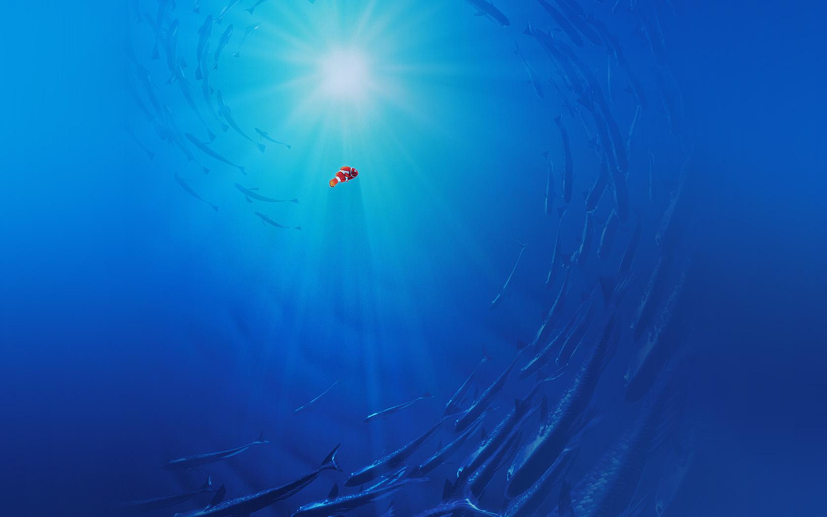 aq58-finding-dory-disney-nemo-cute-wallpaper