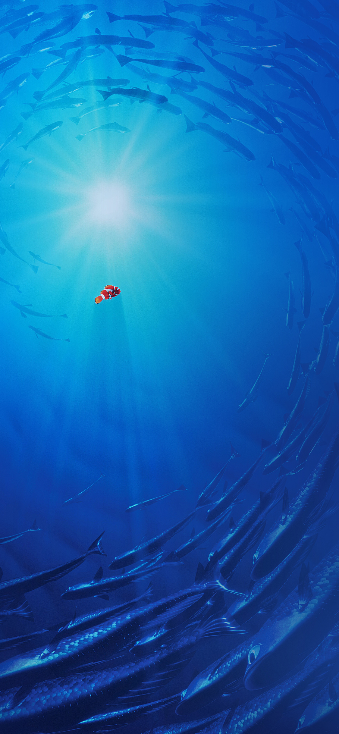 Aq58 Finding Dory Disney Nemo Cute Wallpaper