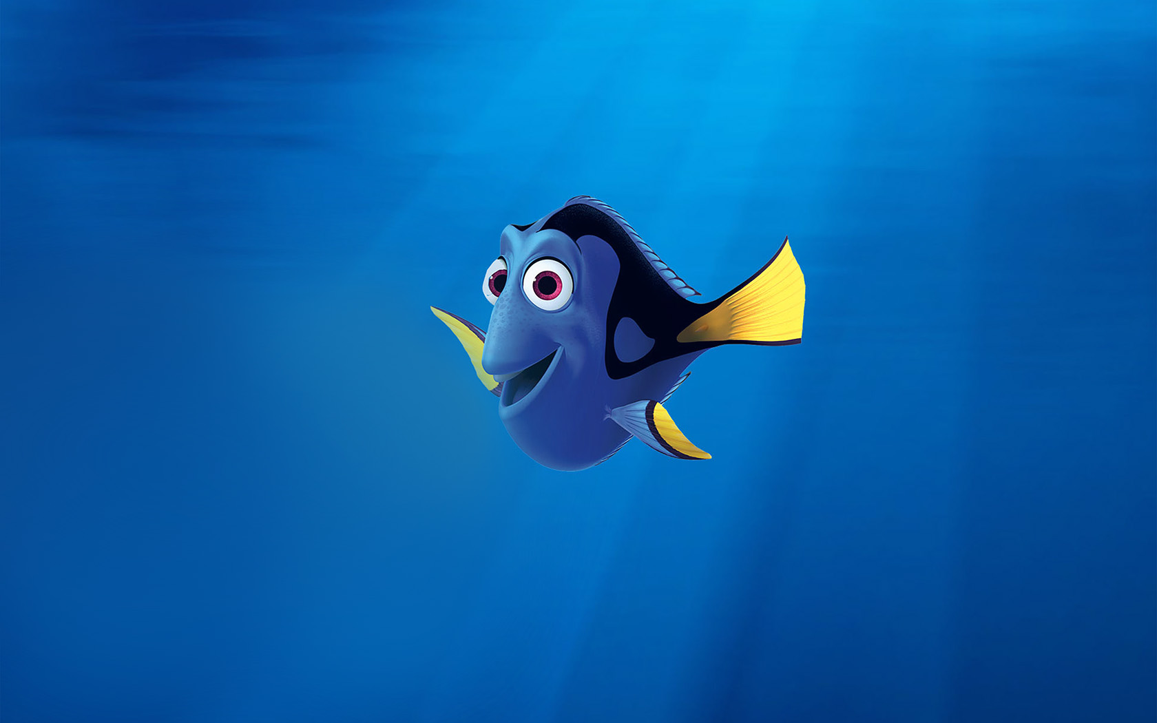 finding nemo introduction to film essay Finding dory: 3 things to do before you go & 3 the main theme of the movie like finding dory, finding nemo has a happy 3 topics to discuss after finding.