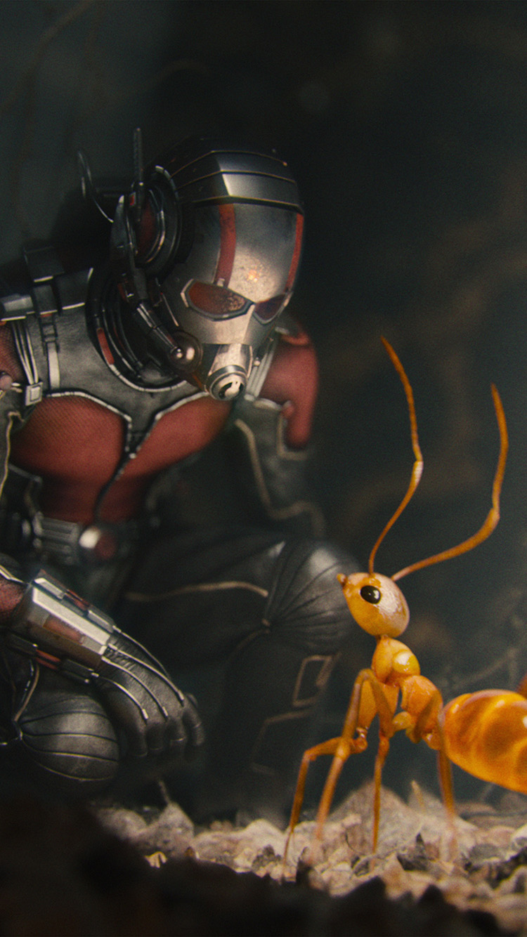 iPhone6papers.co-Apple-iPhone-6-iphone6-plus-wallpaper-as17-marvel-antman-metts-ant-film-art-illustration