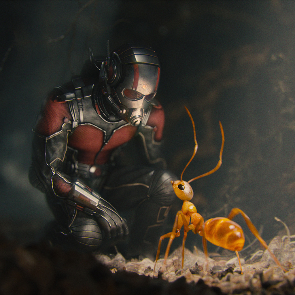 wallpaper-as17-marvel-antman-metts-ant-film-art-illustration-wallpaper