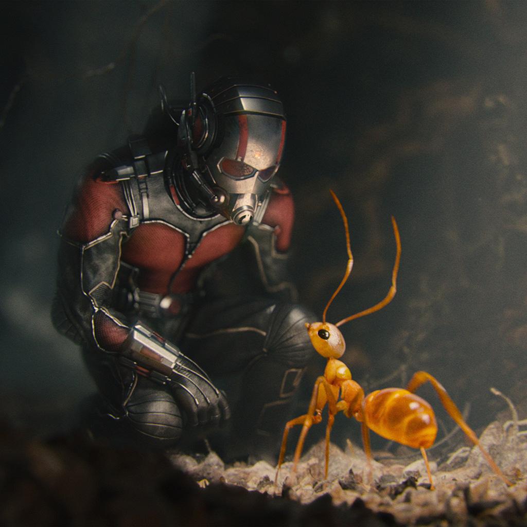 android-wallpaper-as17-marvel-antman-metts-ant-film-art-illustration-wallpaper