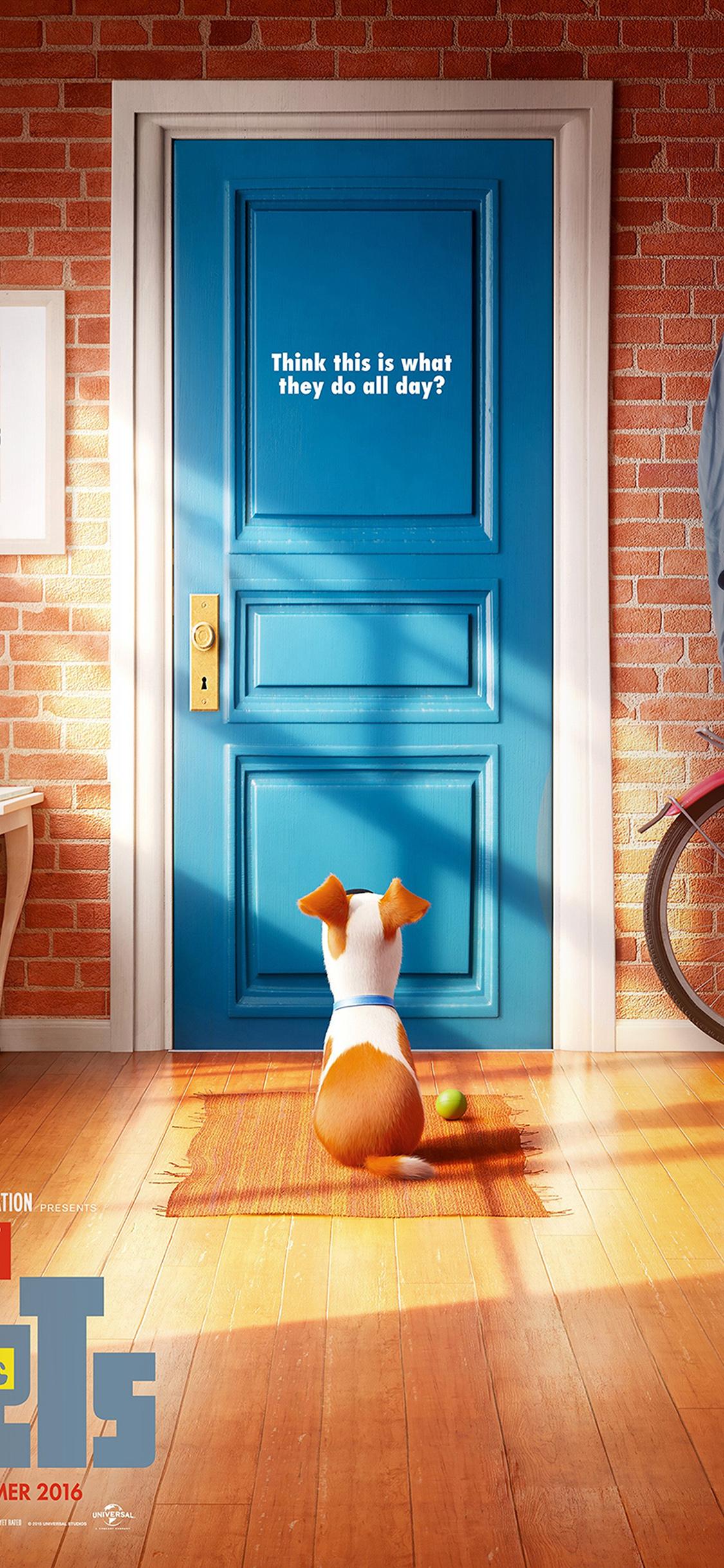 iPhoneXpapers.com-Apple-iPhone-wallpaper-as47-pets-animation-cute-film-art-illustration