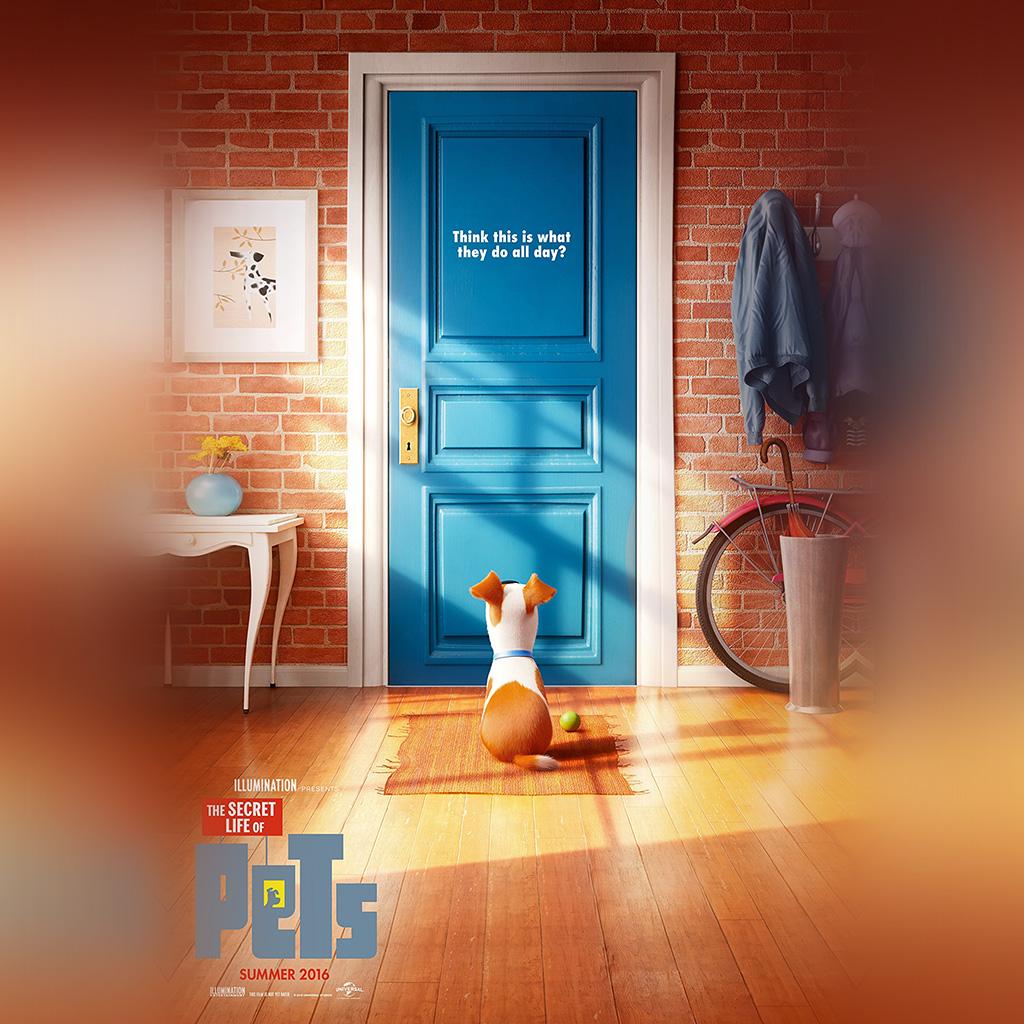 android-wallpaper-as47-pets-animation-cute-film-art-illustration-wallpaper