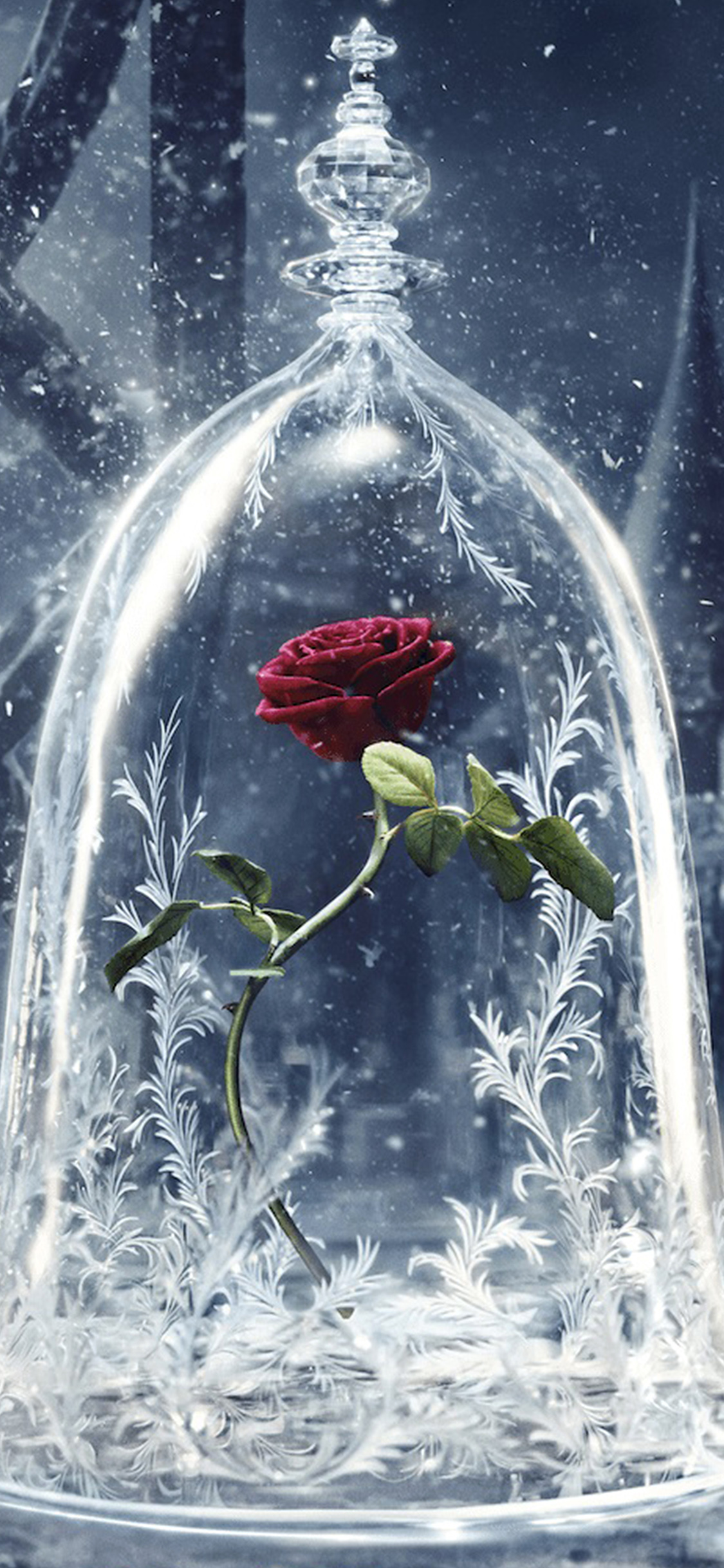 As61 Disney Beauty Beast Art Illustration Wallpaper
